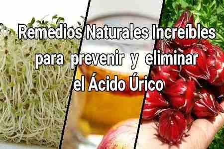 eliminar y prevenir ácido úrico