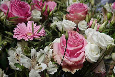 Aniversario de bodas amor flores