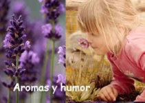 Los aromas y el humor 1
