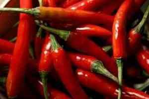 hemorroides aji chirere chirel chile