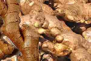 Vegetales y frutas para quitar el hambre jengibre