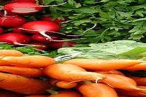 vegetales frescos saludables