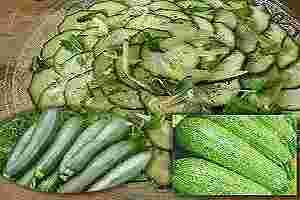 Calabacín y propiedades para salud y adelgazar
