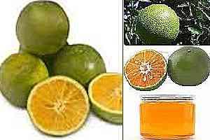 Frutas para evitar dolencias y conservar la buena salud