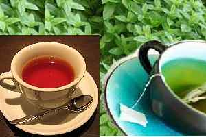 Remedios naturales para salud,