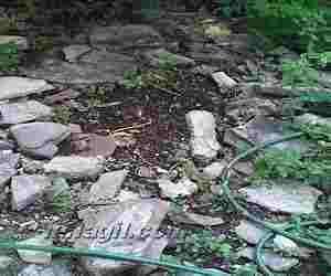 Agua para regar el jardín