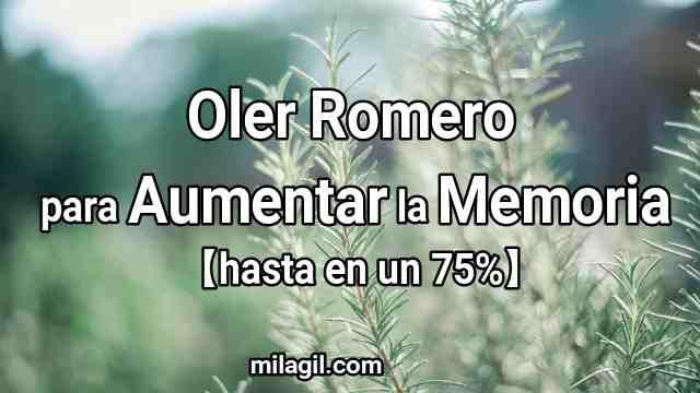 oler romero aumenta memoria