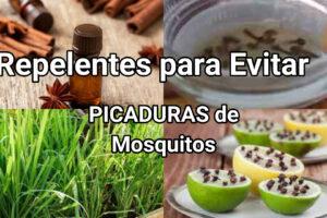 repelentes para evitar picaduras de mosquitos